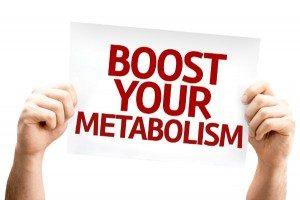 metabolismos
